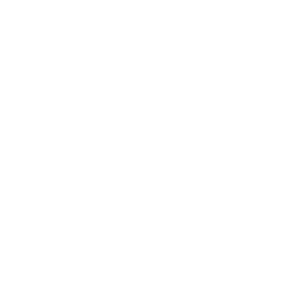 Ford+Logo+White.png