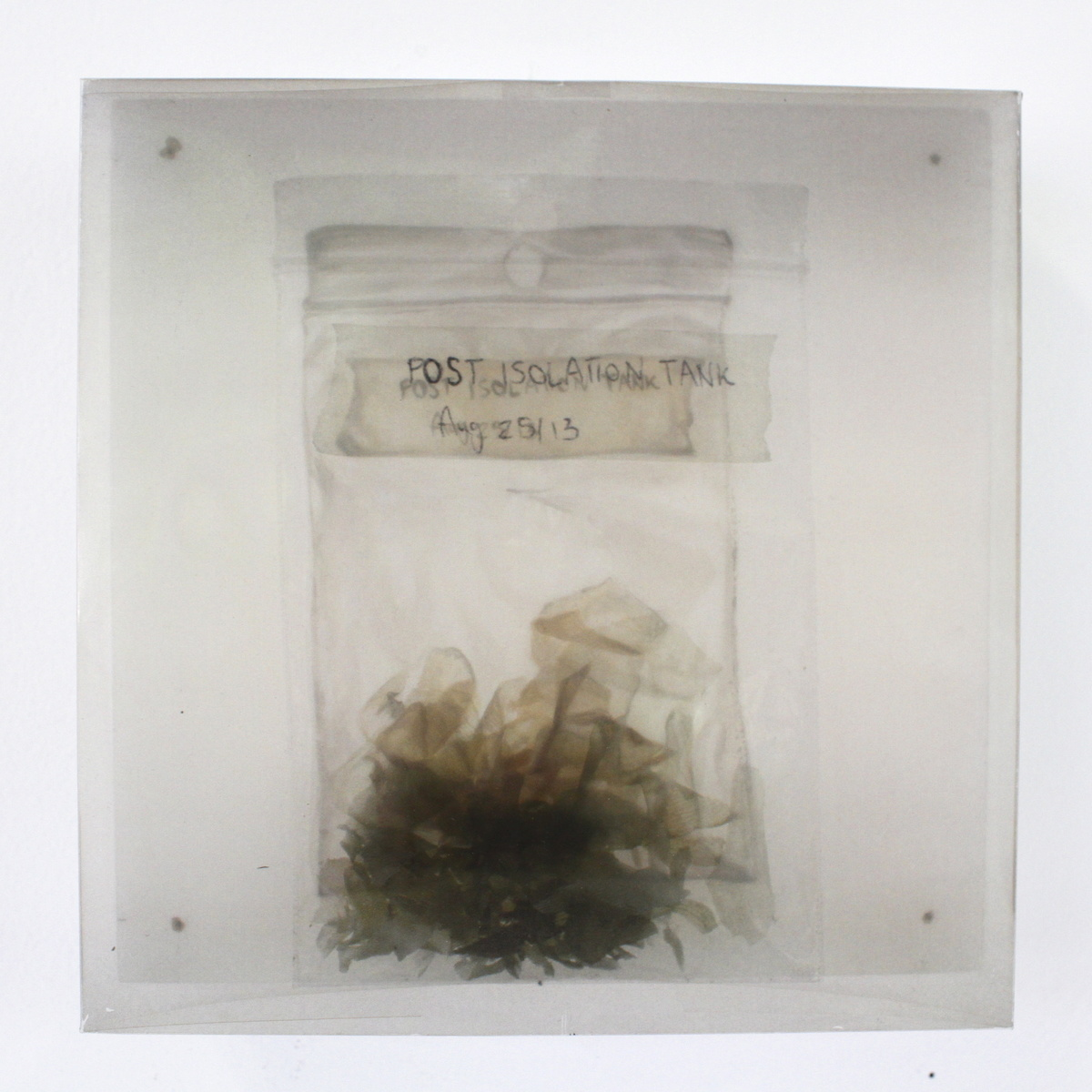 "ink on transparency, nails, oil on board 6"" x 6"" 2015  © Meaghan Barry"