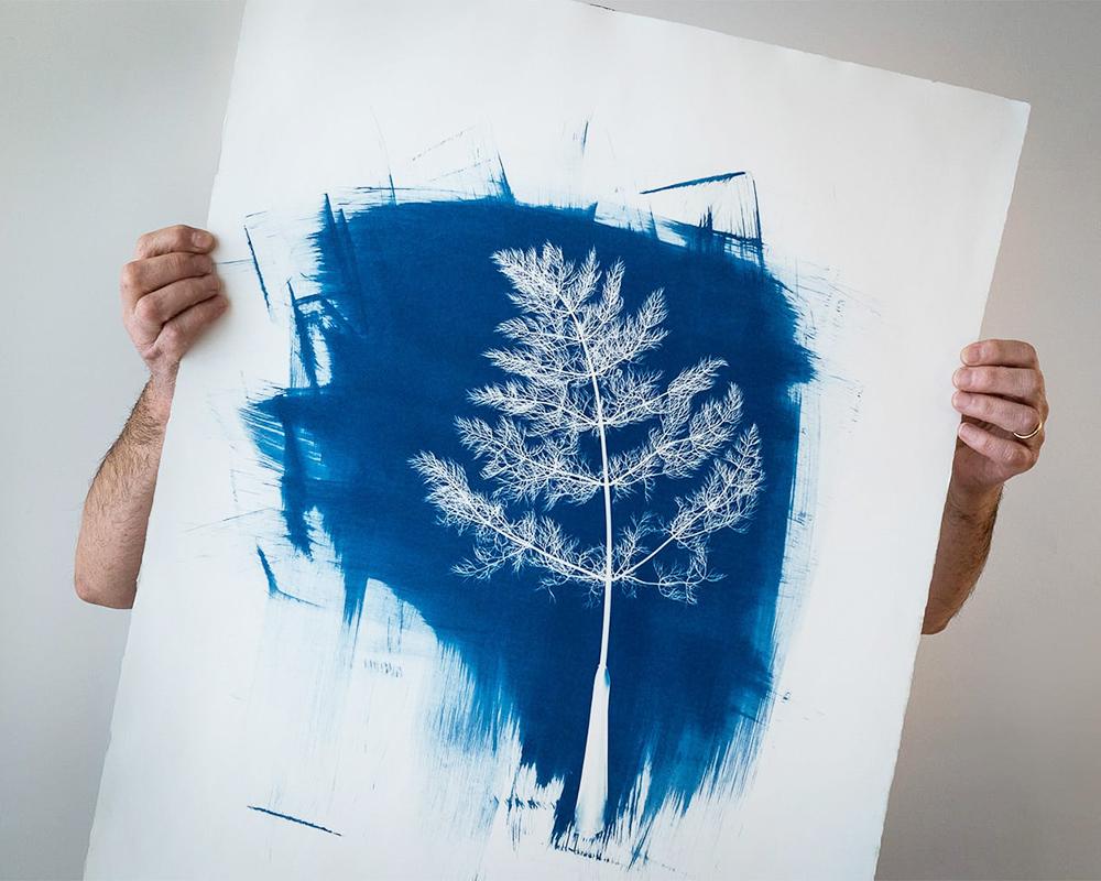 blauwdruk -