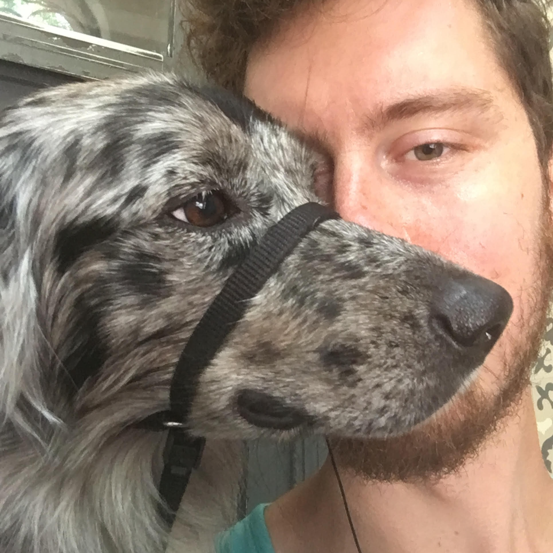 Justin - Justin is a writer and musician living in Ridgewood. He doesn't have a dog of his own but he did teach his cat to sit and give low-fives!