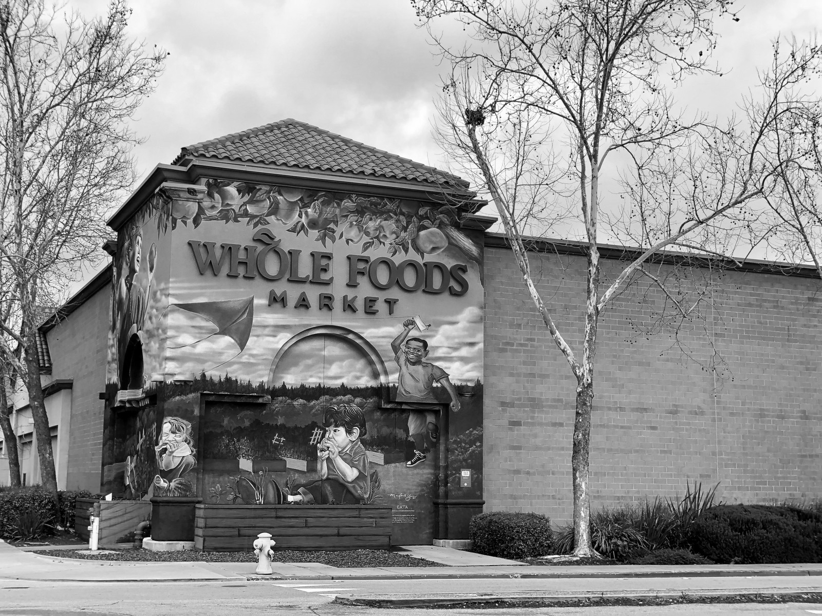 Whole+Foods+Market+Grocery+Store+Redwood+City+Blu+Skye+Media-X3.jpg