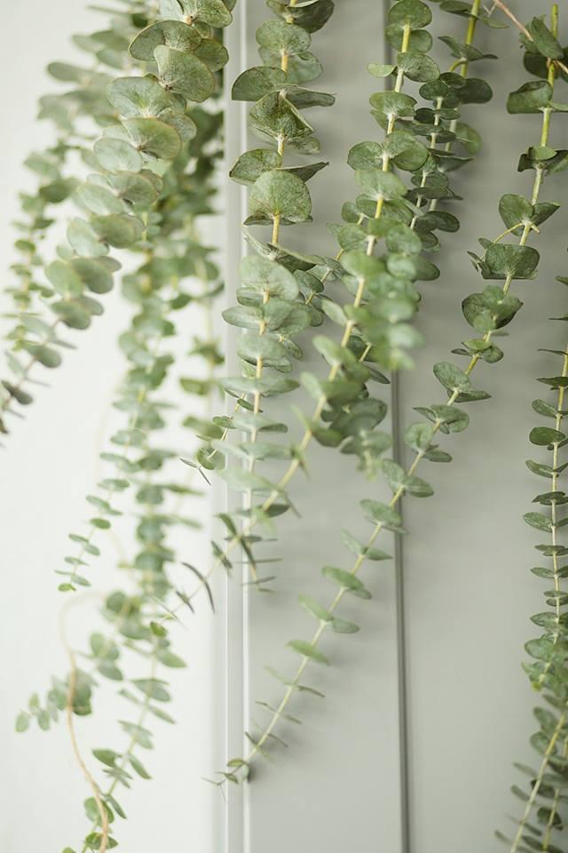 Eucalyptus Garland Casa De Flores Houston Florist
