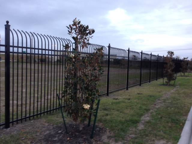 8 ft tall commercial ornamental fence with curved top