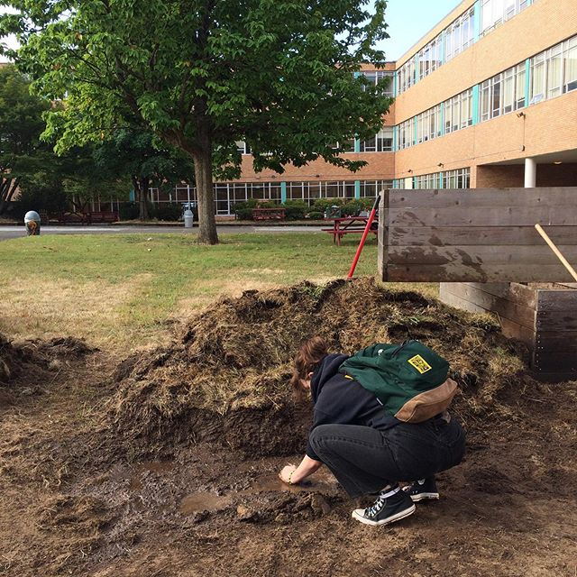 All intern hands on deck at Marshall High School this next week! 💥‼️ We're building up the garden so Madison students can use it for the next two years. The work we are doing now is for a future of hands on knowledge, increased awareness, and to create beauty in the school. We're not just making this garden for Madison students, but for any future students & sustainable garden programs that come to Marshall campus. Build it up together, we all prosper!!!💚
