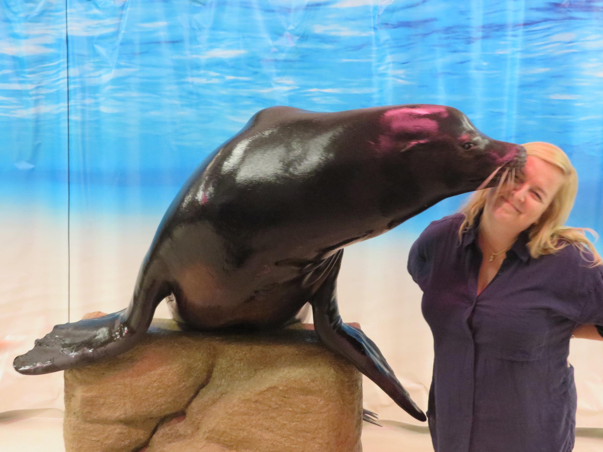 Seal Meg.JPG