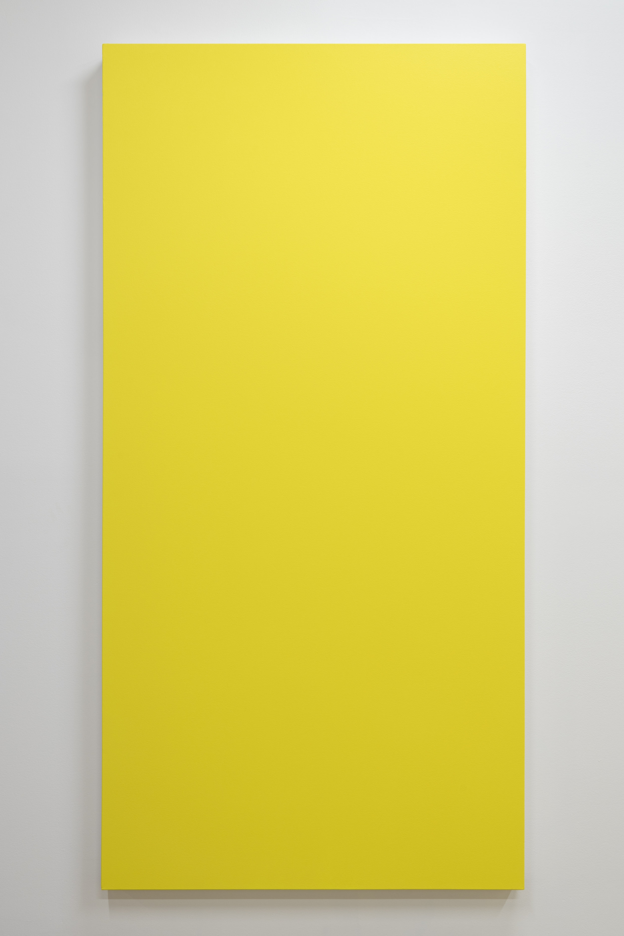 10_Lemonade1.jpg