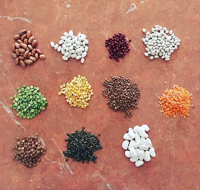 No one can say there isn't enough protein in a plant based diet, with 11 different types of legume protein pictured here from peas to lentils to beans. All with fantastic flavours, all organic and all full of iron, protein, aminos, vitamins and are sooo tasty. Get amongst it! #protein #plants #healthy #planethealth #sustain #able #diy #everybitcounts #peas #lentils #legumes #beans #growyourown #foodie #health #environment #instafood