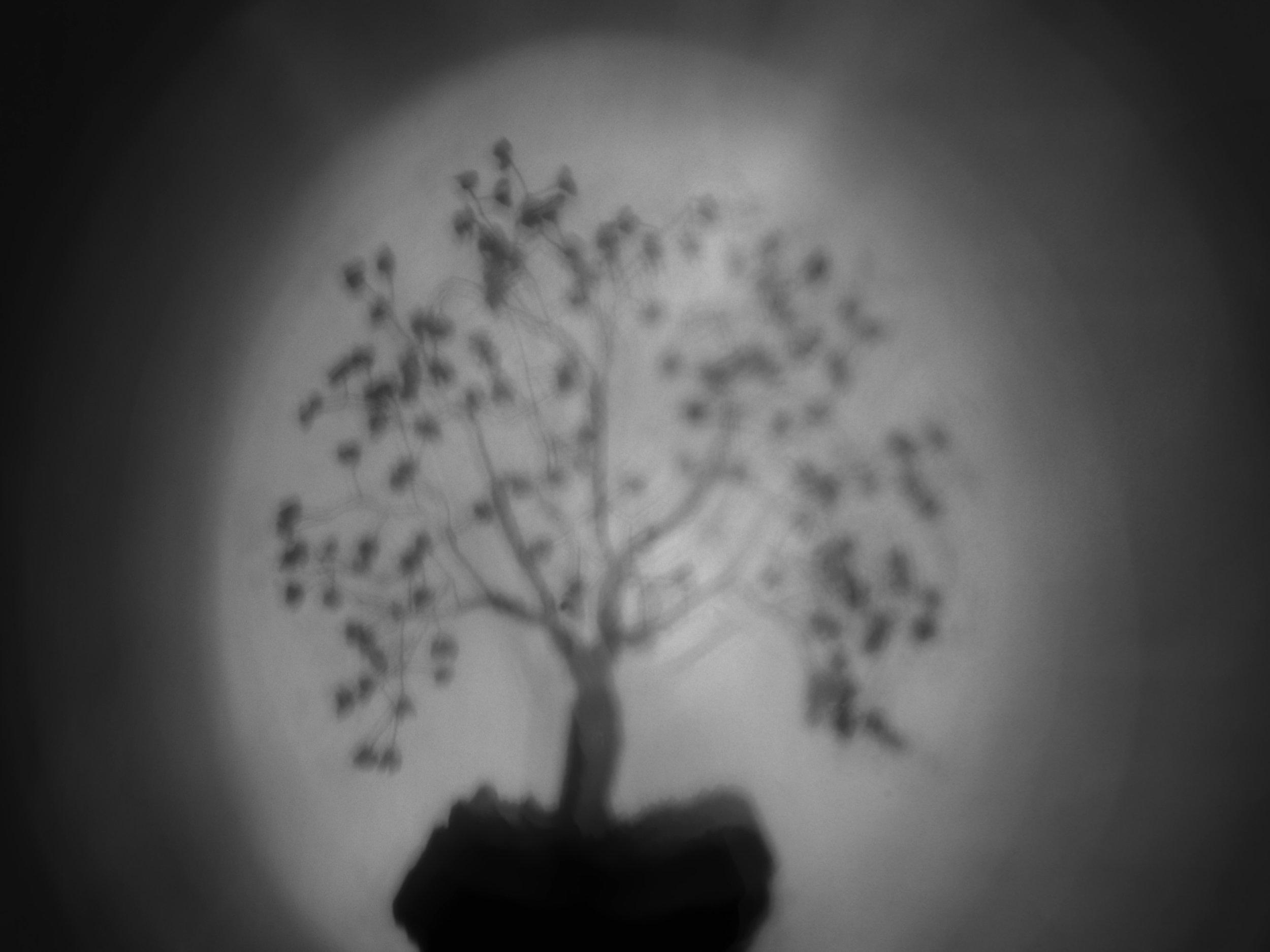 Lightand Shadow in the Future-QEP FINE ART 2018-Life-Marco Garofalo-Fine Art Photography-2018.jpg