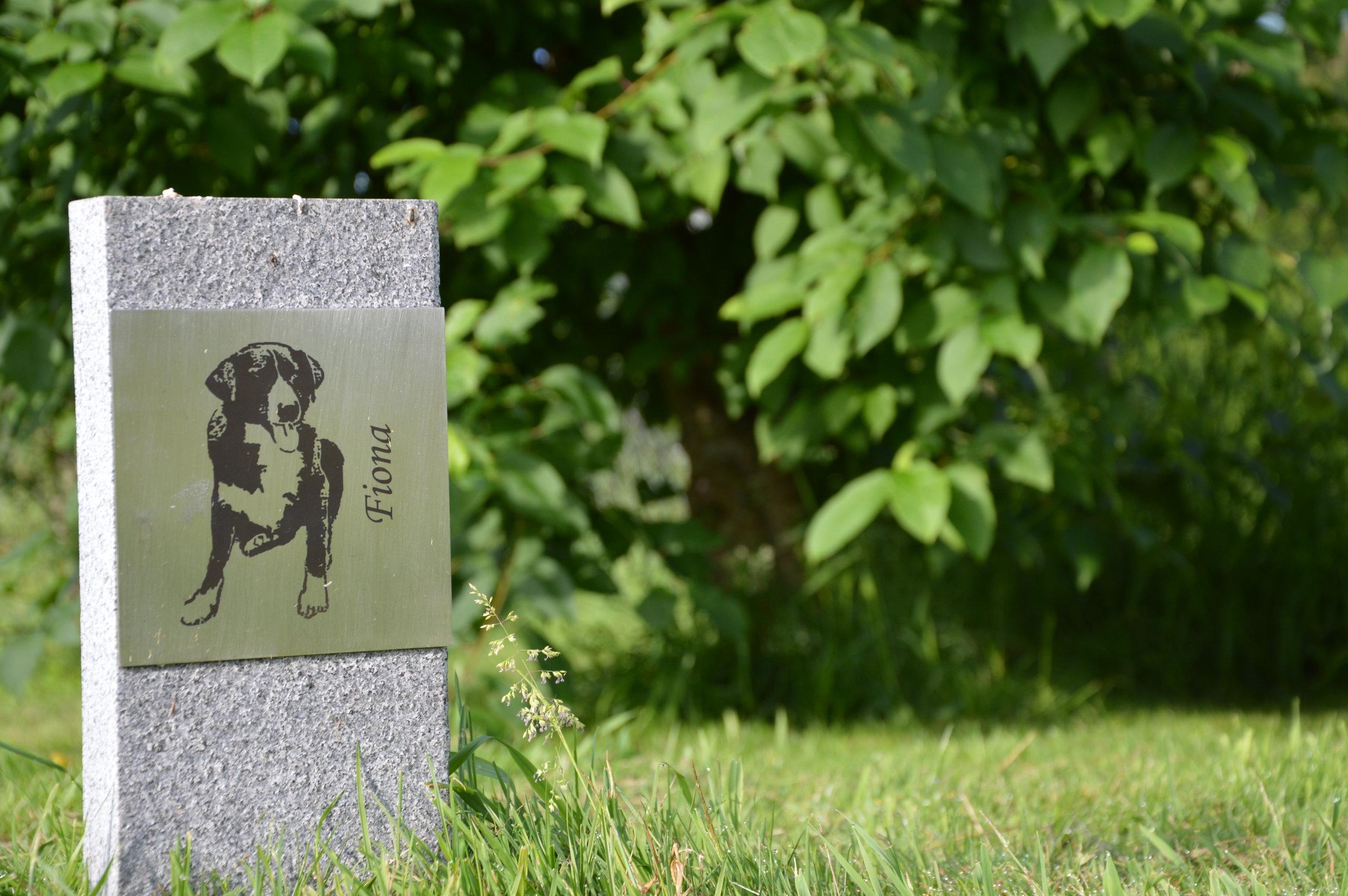 Beispiel eines Grabsteins mit Bild.JPG