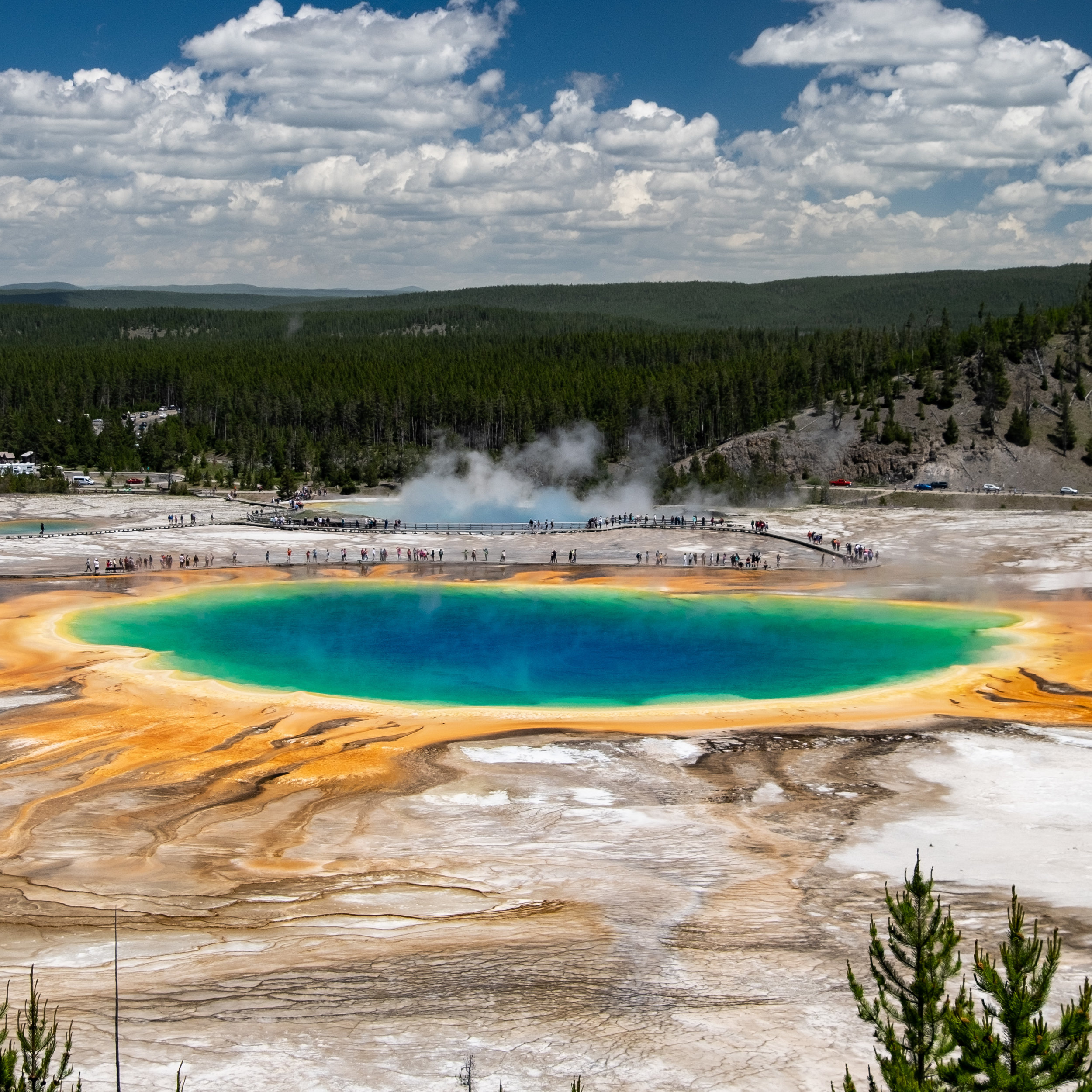 Iconic Yellowstone-6.jpg
