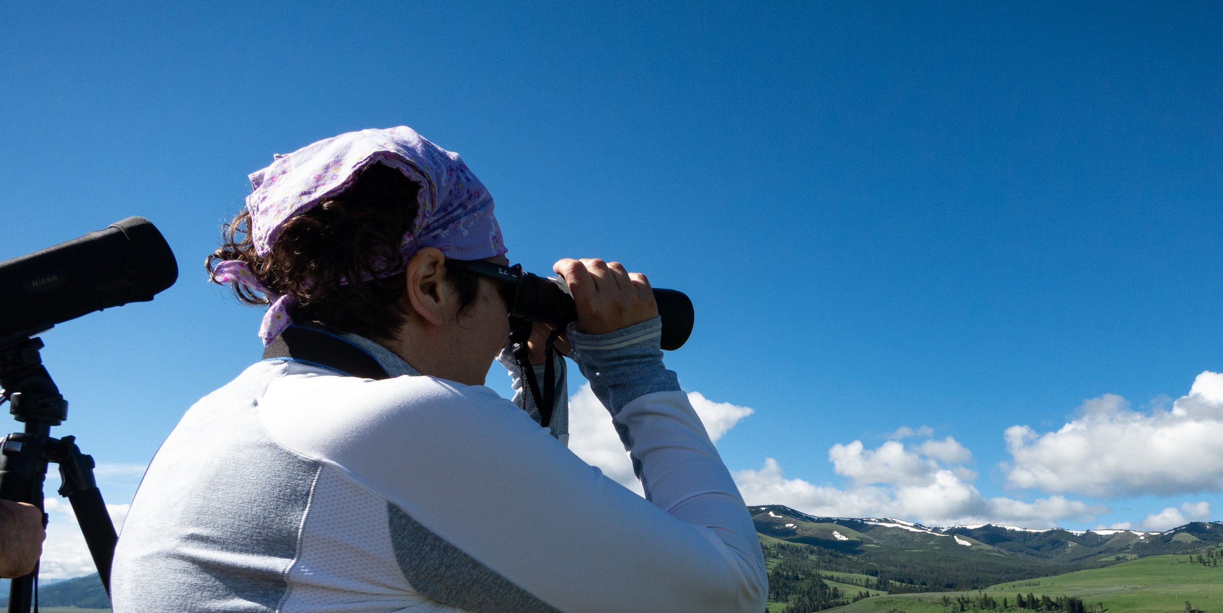 Wildlife Watching.jpg