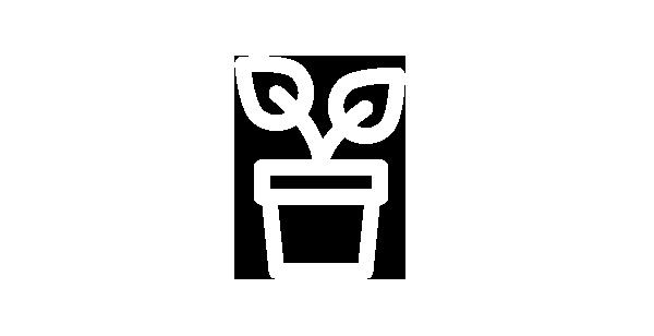 icones-dicas-07-plantas.png