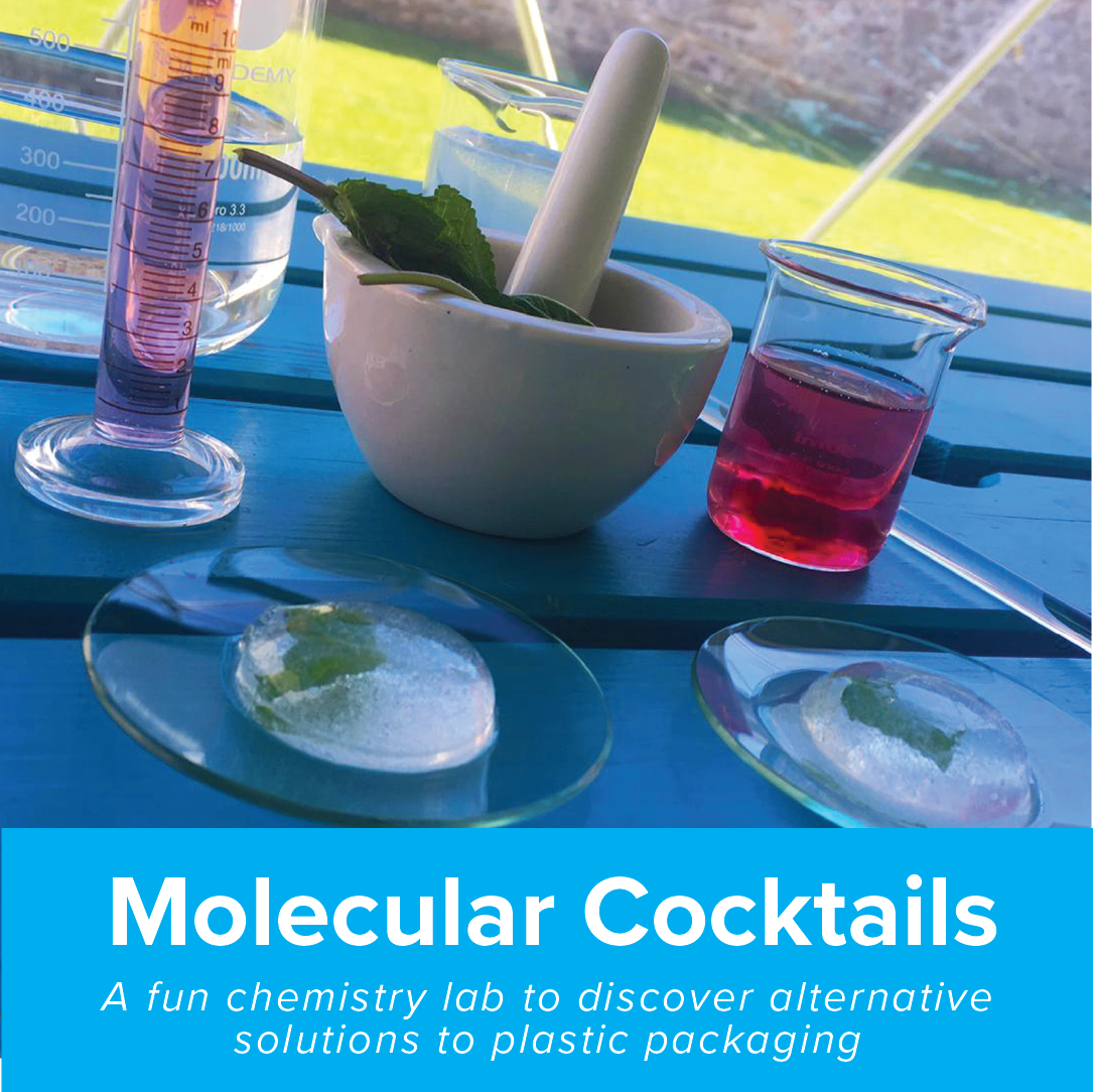 molecular cocktail cool planet experience