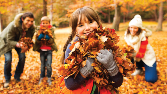 Sunday Times : 30 Great Autumn Days Out