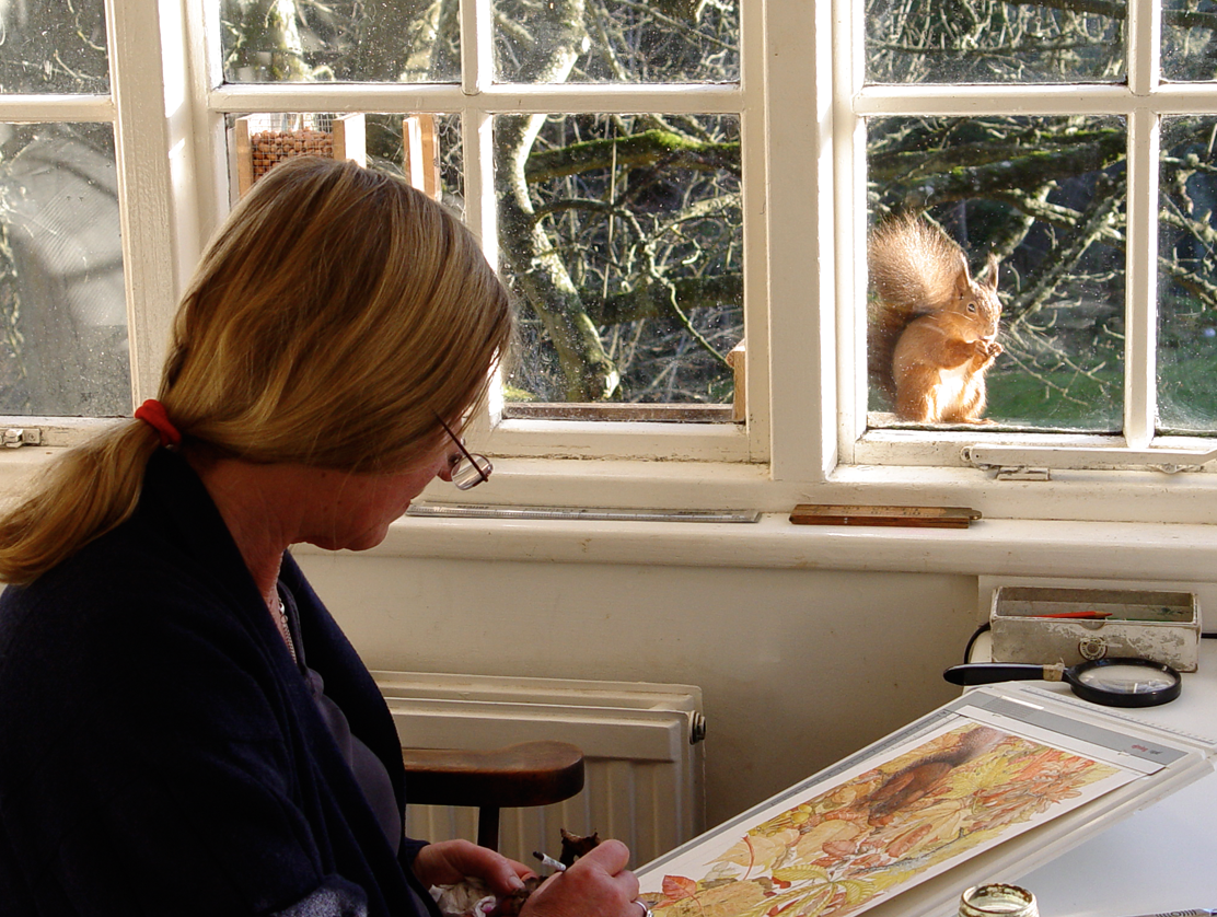 Regular visitors such as this red squirrel, mean that Laura is able to paint much of her work from life.