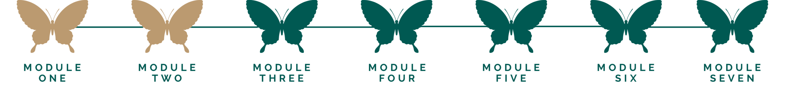 Module 2.7.png