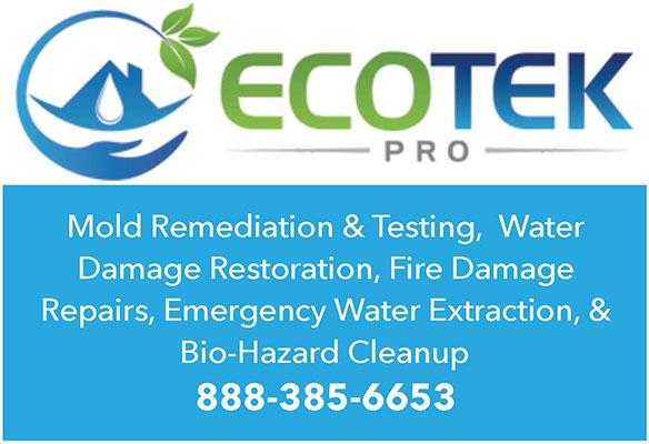 ecotek-pro-mold-remediation-testing-water-damage-restoration.jpg
