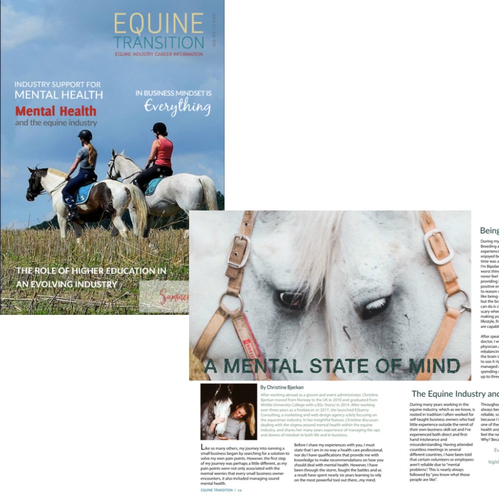 Article - Equine Transition. Subscribe to their magazine to read the full article  here!
