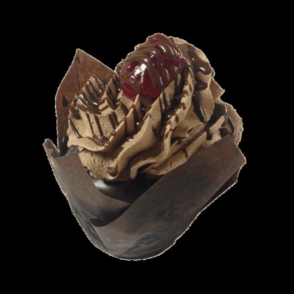 Chocolate Raspberry Truffle.png