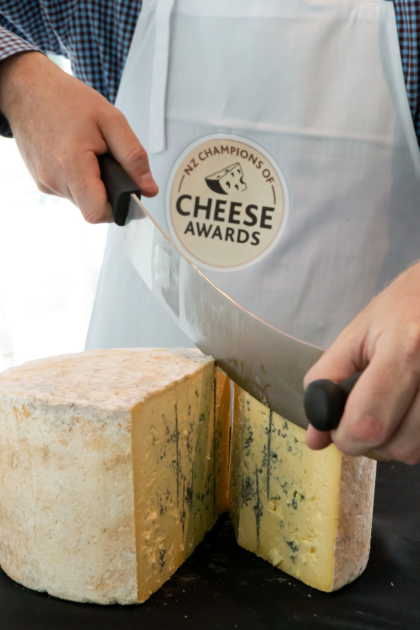 2019 Cheese Judging blue.jpg