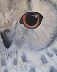 Owl+Snow.png