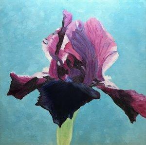 Blooming+Iris+7-18.jpg