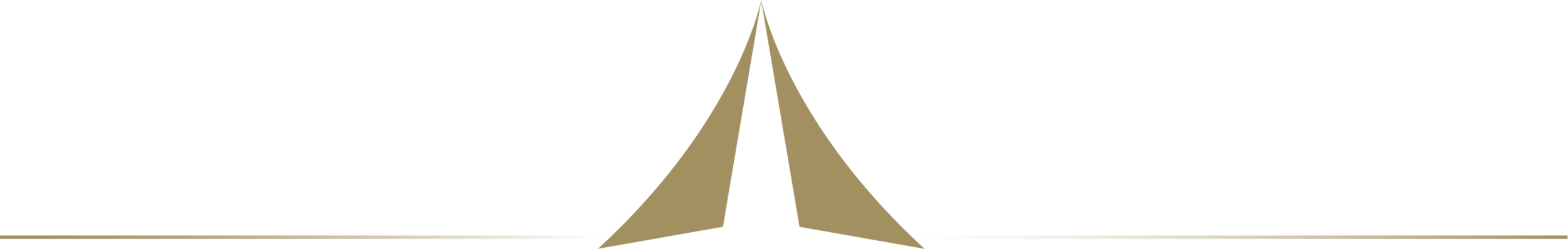 Action Aviation Logo.png