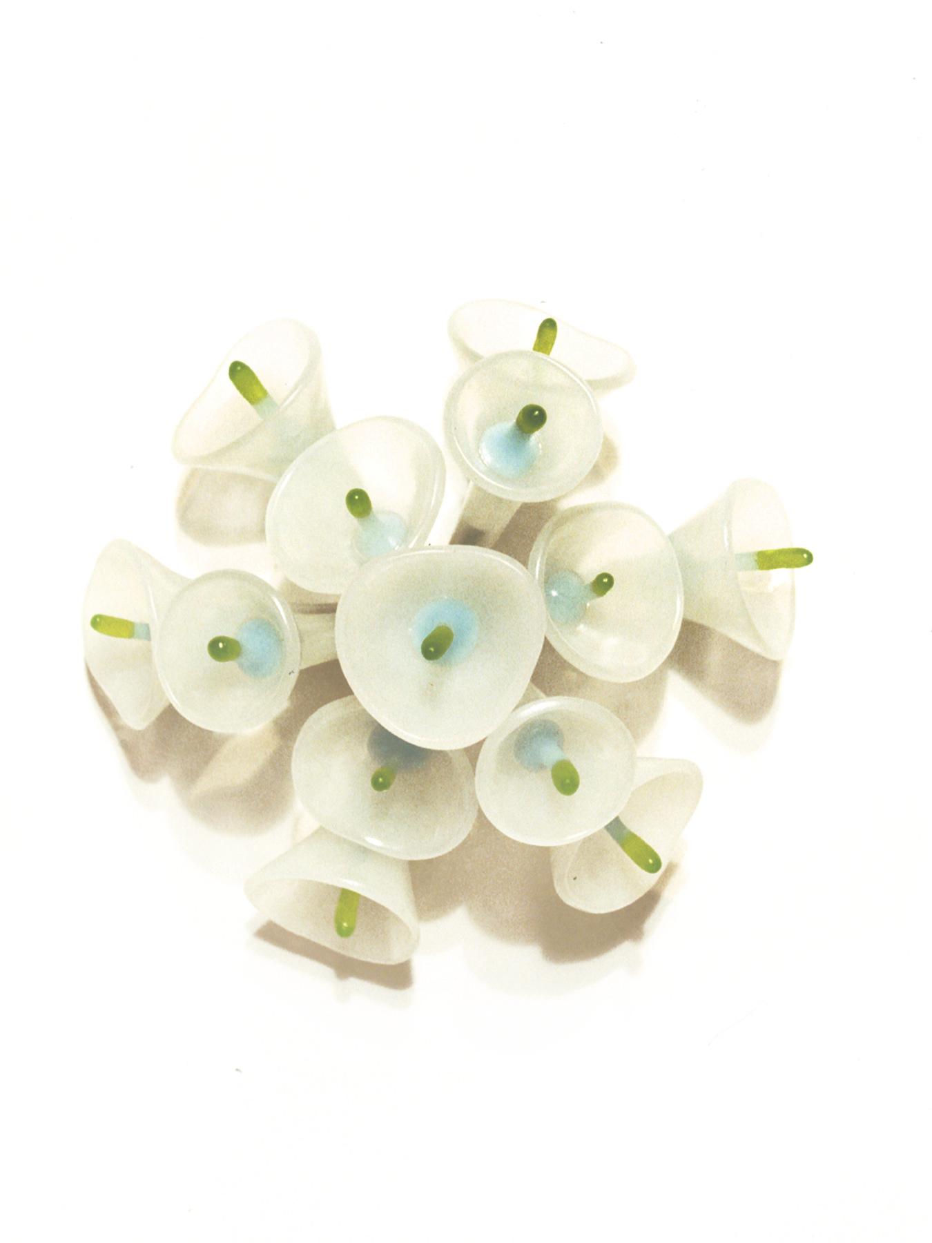 Floris (white).jpg