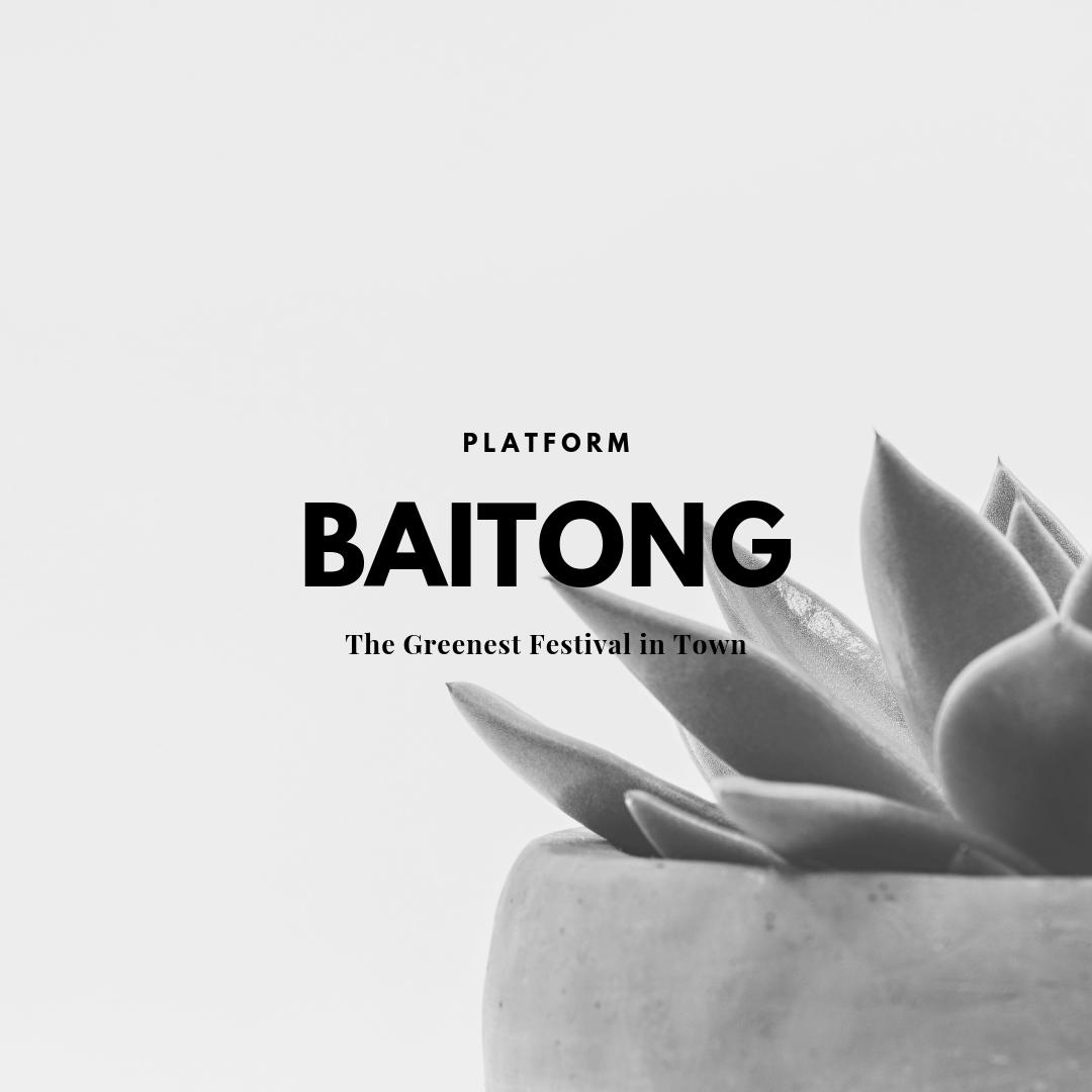 Baitong project option