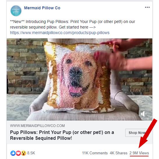 mermaidpillow-pup.jpg