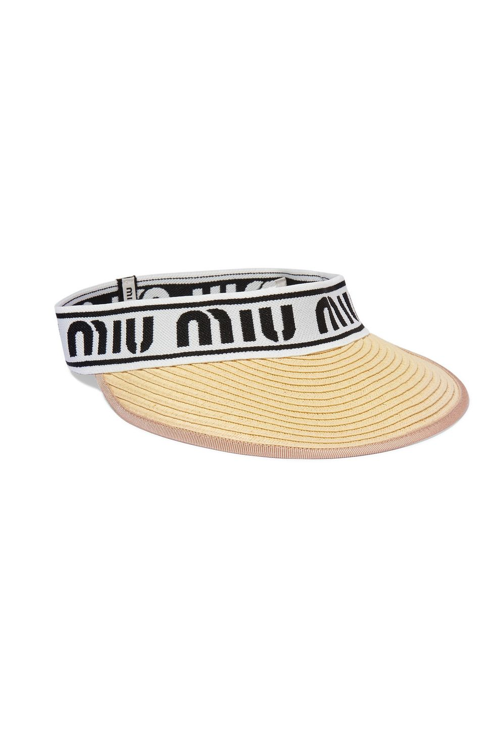 The visor
