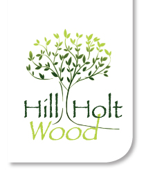 Hill Holt Wood.jpg