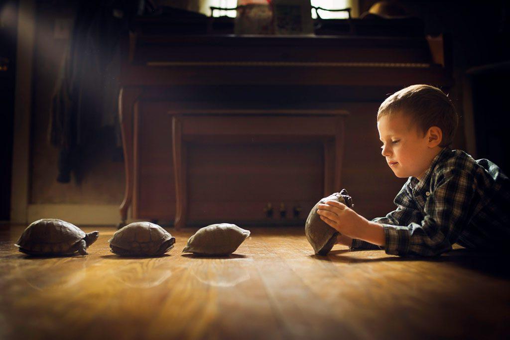 inspecting-turtles-1024x683.jpg