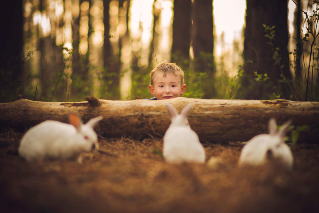 little-boy-with-bunnies-4.jpg