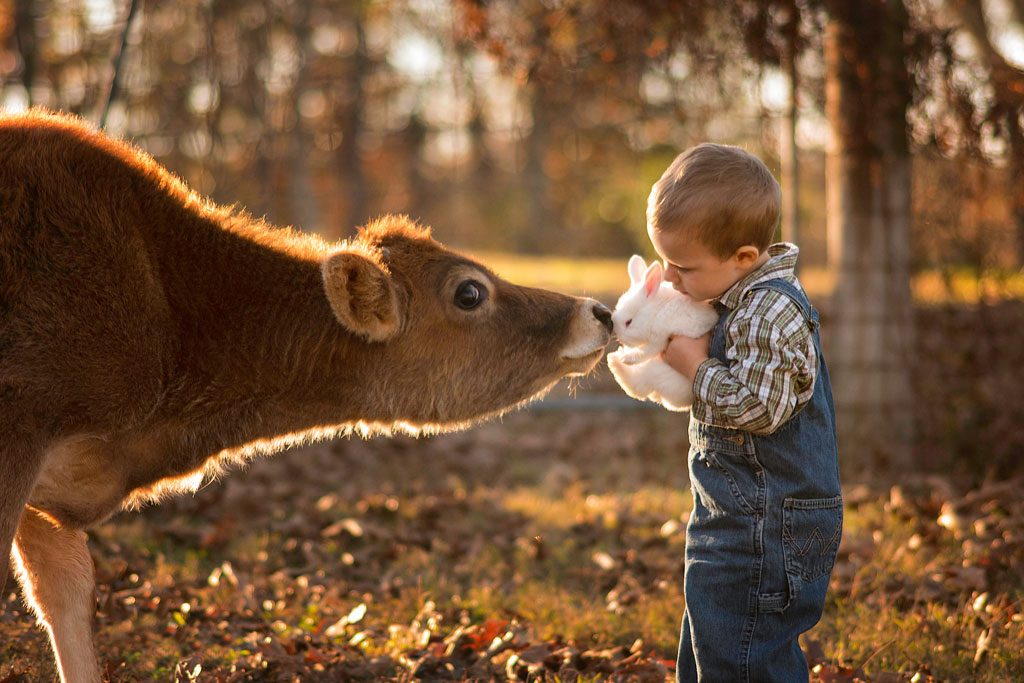 little-boy-with-cow-and-bunny-1024x683.jpg