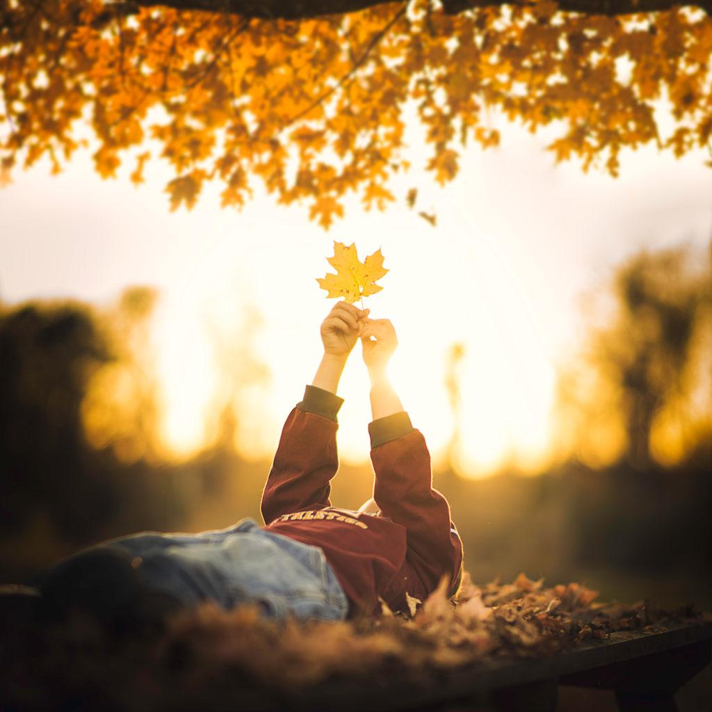little-boy-holding-a-leaf.jpg