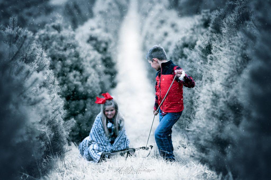 Let-it-Snow-3-1024x683.jpg