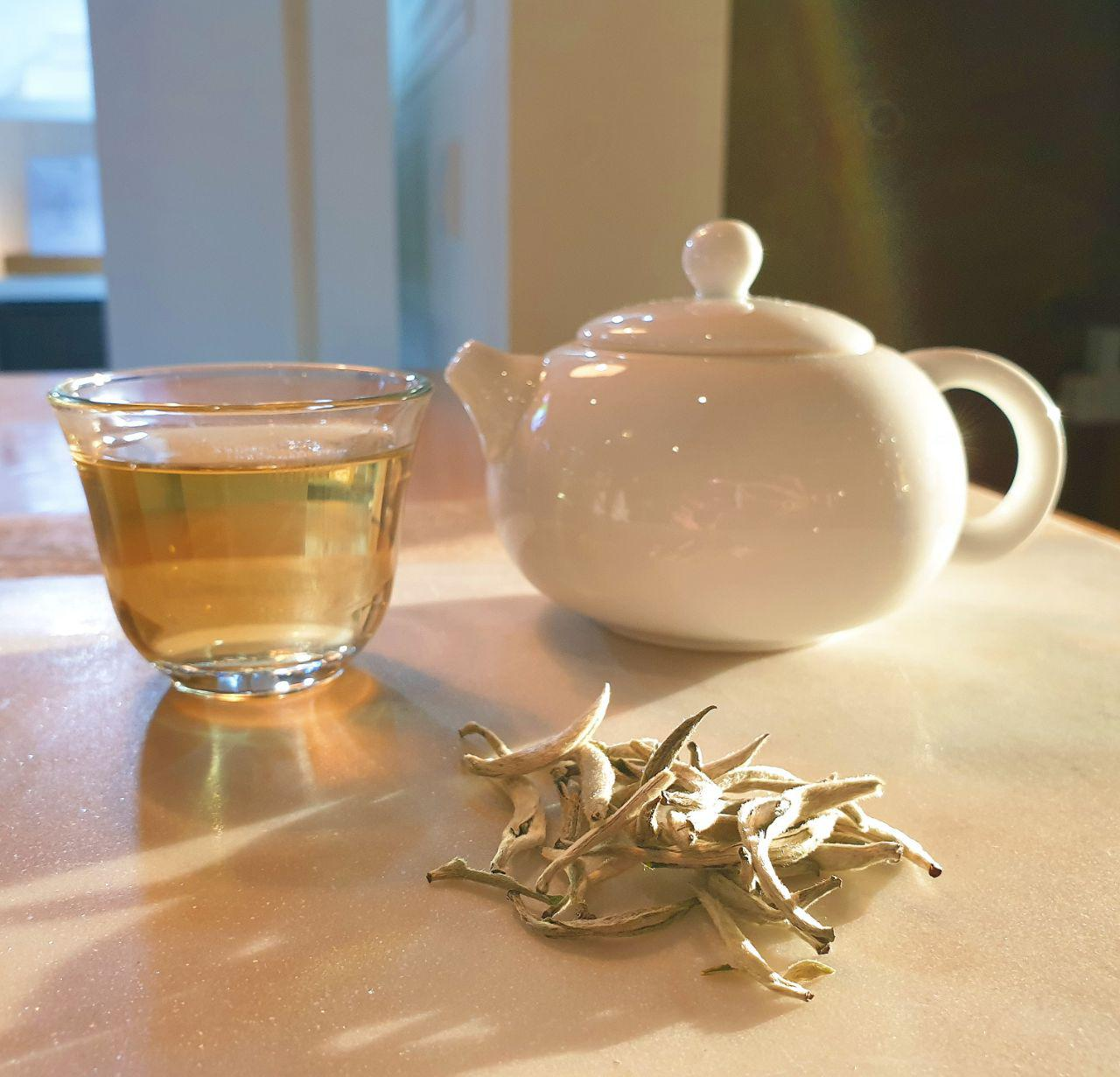 WHITE TEA IS THE LEAST PROCESSED AMONG ALL TRUE TEA TYPES. - Tea is a plant that gives us the beverage TEA. Anything that is not steeped from the leaves and buds of the tea plant is not tea in the strictest sense, but a tisane—a herbal infusion.. There are only 6 types of teas which are defined by the process that makes them:BLACK TEA, GREEN TEA, WHITE TEA, YELLOW TEA, OOLONG, PUERH TEA.The least processed the leaves are, the highest amount of polyphenols it can retain.The tea plant has over 30,000 different polyphenols and white tea retains the highest amount of polyphenols since it is the least processed.