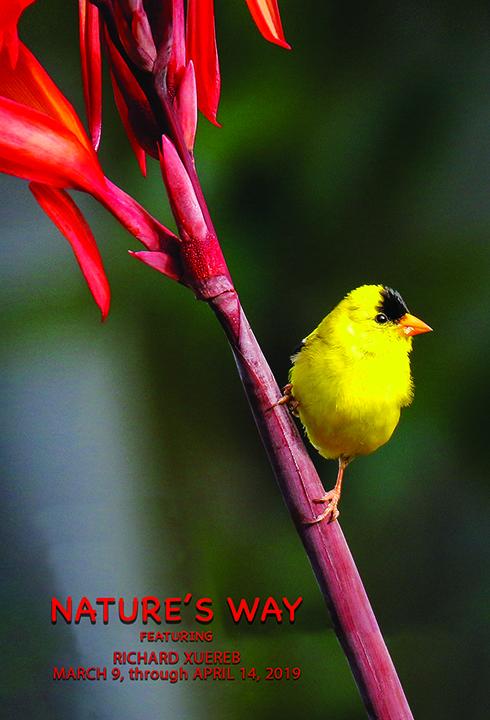 Nature's_Way_eCard.jpg