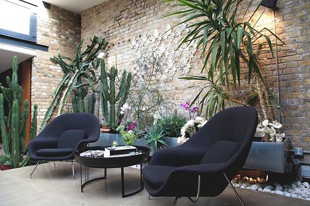 Our exotic indoor garden can be enjoyed no matter whether it's rain or shine outside