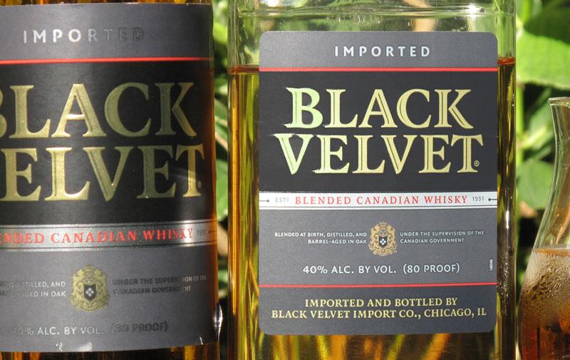 Black-Velvet-3yo-for-web.jpg