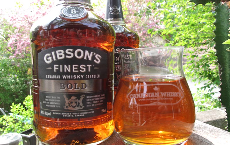 Gibsons-Bold-8-year-old.jpg