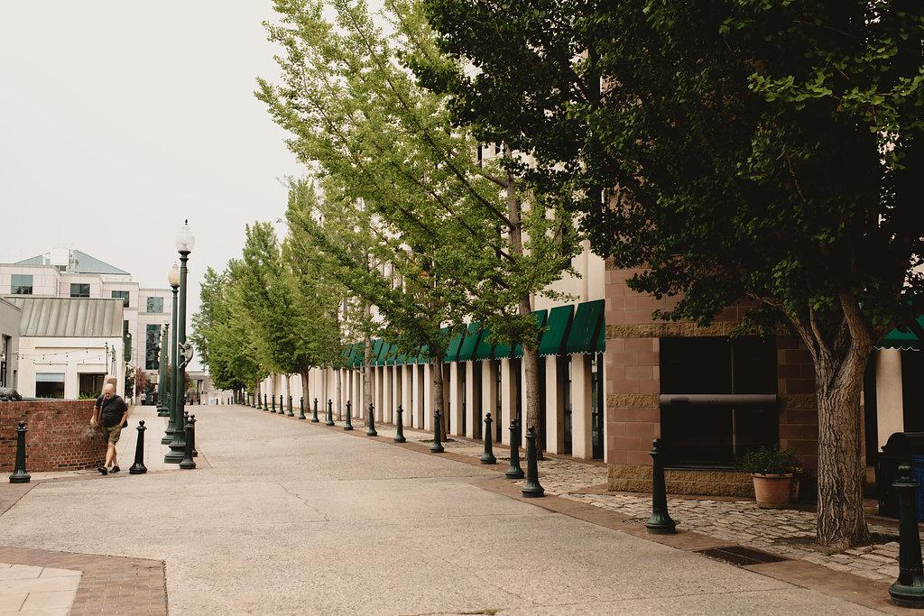 Asheville's memorable cobblestone sidewalks on Wall Street.