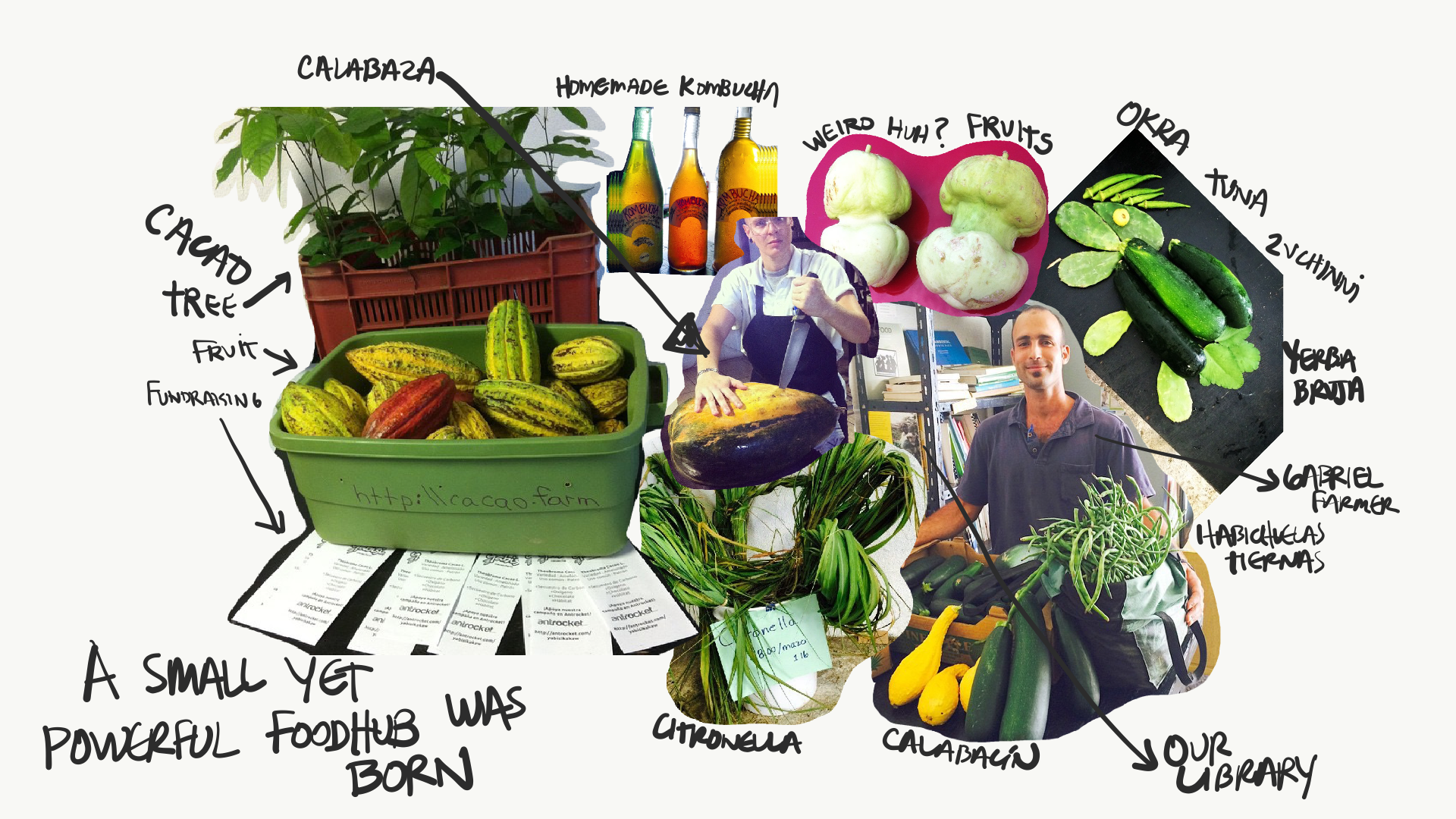 2010 - 2012: - El Departamento de la Comida started in 2010 as Puerto Rico's first multi-farm CSA. We purchased and picked up produce from an average of 10 farms per week and distributed to 150 clients at drop-off locations in San Juan, Caguas and Ponce.