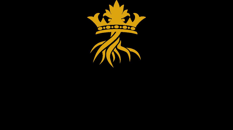 PISOS logo primary-1.png