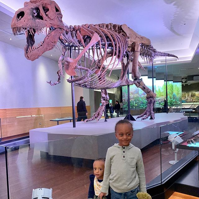 We got to see the largest dinosaurs 🦖 SUE the T.Rex while we visited Chicago 😍Manu had a blast ✨ . . . . . . . . . #love #dinosaur #suethetrex #cute #iphonesia #family #instagramhub #beautiful #iphoneonly #instagood #bestoftheday #creator #creatorshala #follow #webstagram #happy