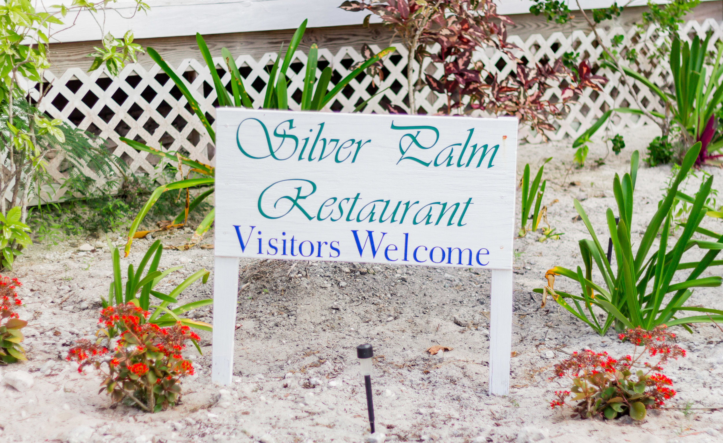 Silver Palm Restaurant