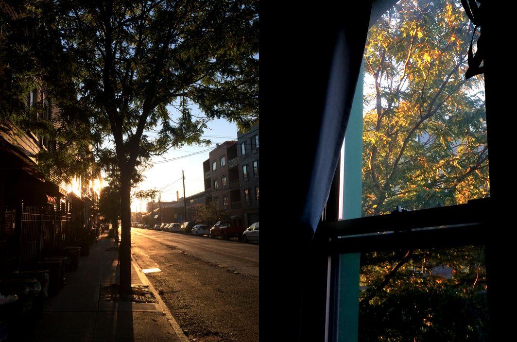 Screen-Shot-2014-11-11-at-3.28.49-PM.jpg