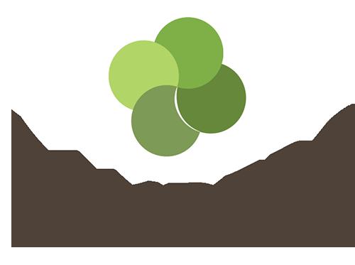 Copy of Copy of Landers
