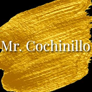 mr cochinillo.png